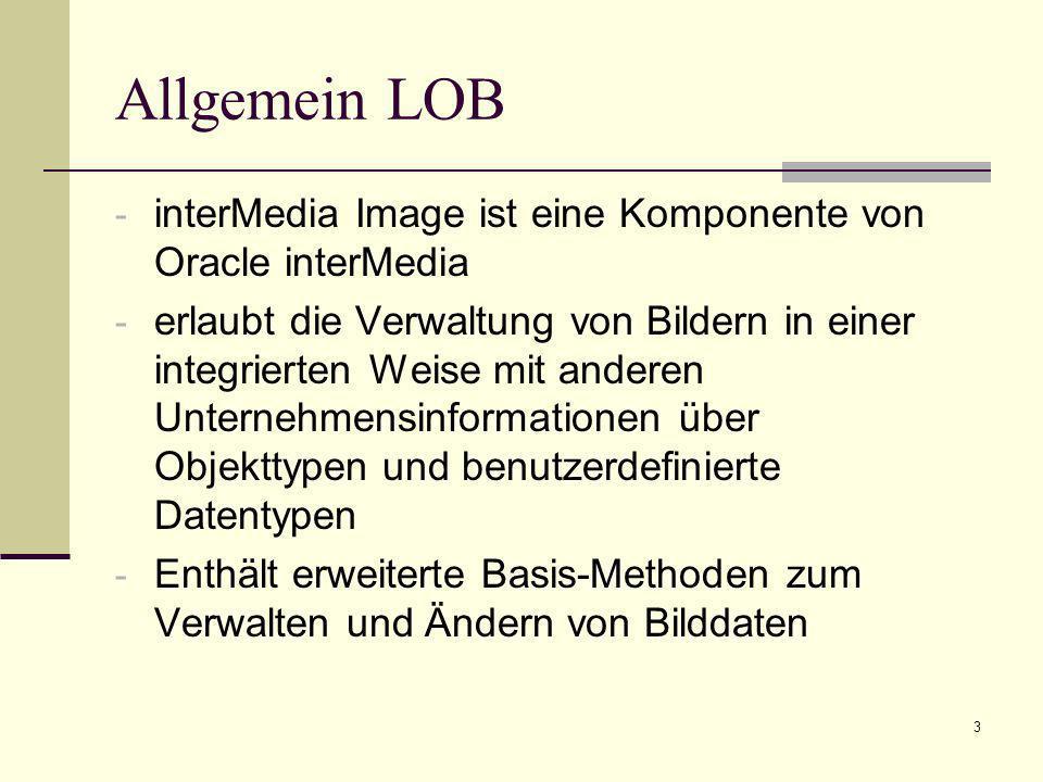 4 Allgemein LOB Warum Bilder in DB speichern.