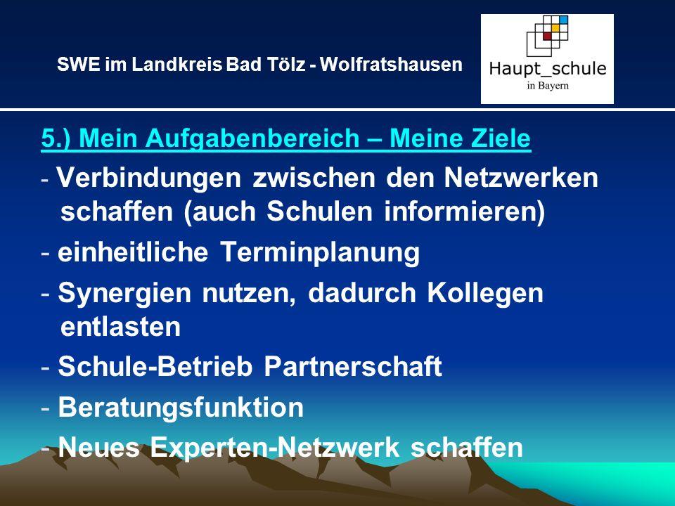 5.) Mein Aufgabenbereich – Meine Ziele - Verbindungen zwischen den Netzwerken schaffen (auch Schulen informieren) - einheitliche Terminplanung - Syner