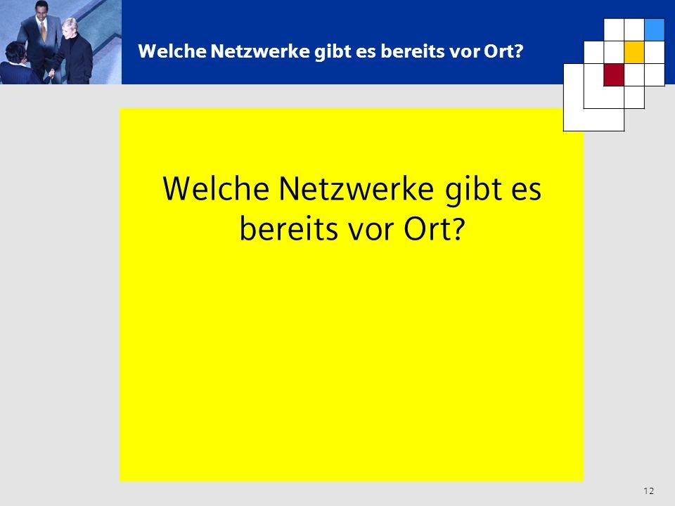 12 Welche Netzwerke gibt es bereits vor Ort?