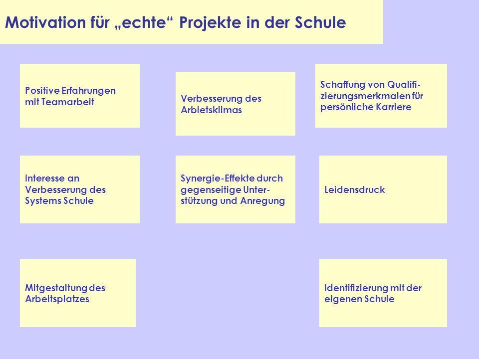 Motivation für echte Projekte in der Schule Positive Erfahrungen mit Teamarbeit Interesse an Verbesserung des Systems Schule Identifizierung mit der e