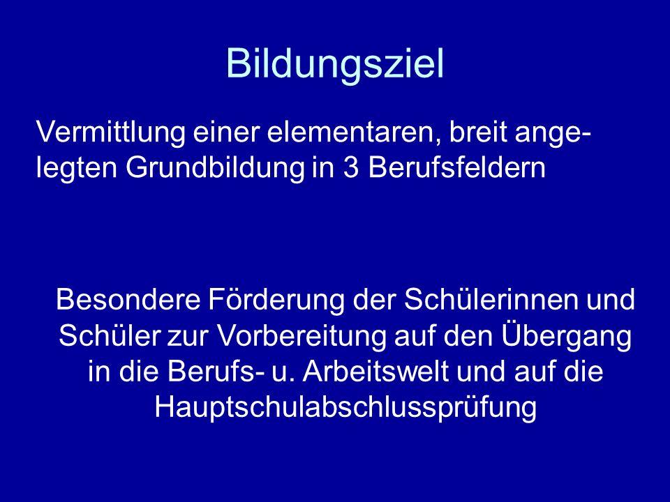 Sozialpflegerisches Berufsbildungszentrum Saarbrücken Berufsvorbereitungsjahr BVJ als Produktionsschule einjährige Vollzeitschule