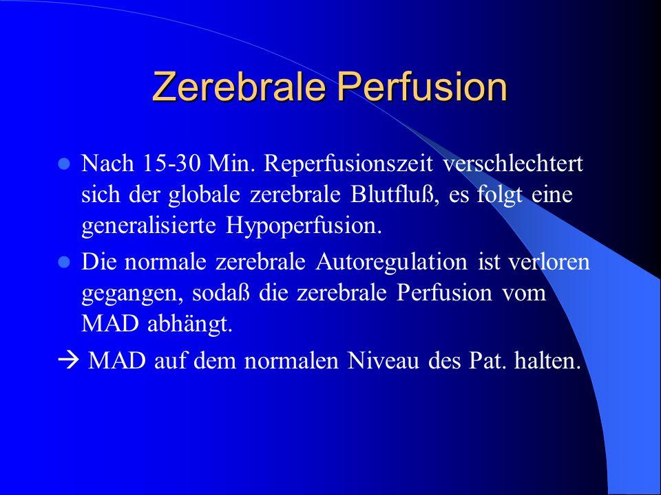 Zerebrale Perfusion Nach 15-30 Min. Reperfusionszeit verschlechtert sich der globale zerebrale Blutfluß, es folgt eine generalisierte Hypoperfusion. D