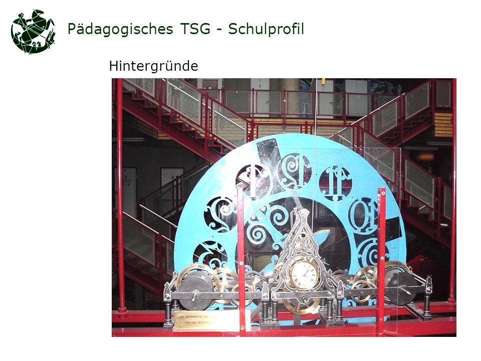 Pädagogisches TSG - Schulprofil Hintergründe