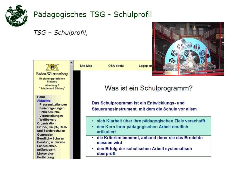 Pädagogisches TSG - Schulprofil TSG – Schulprofil,