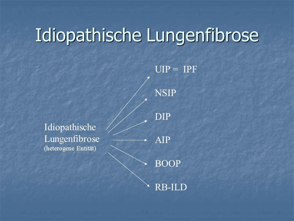 Idiopathische Lungenfibrose Idiopathische Lungenfibrose (heterogene Entität) UIP = IPF NSIP DIP AIP BOOP RB-ILD