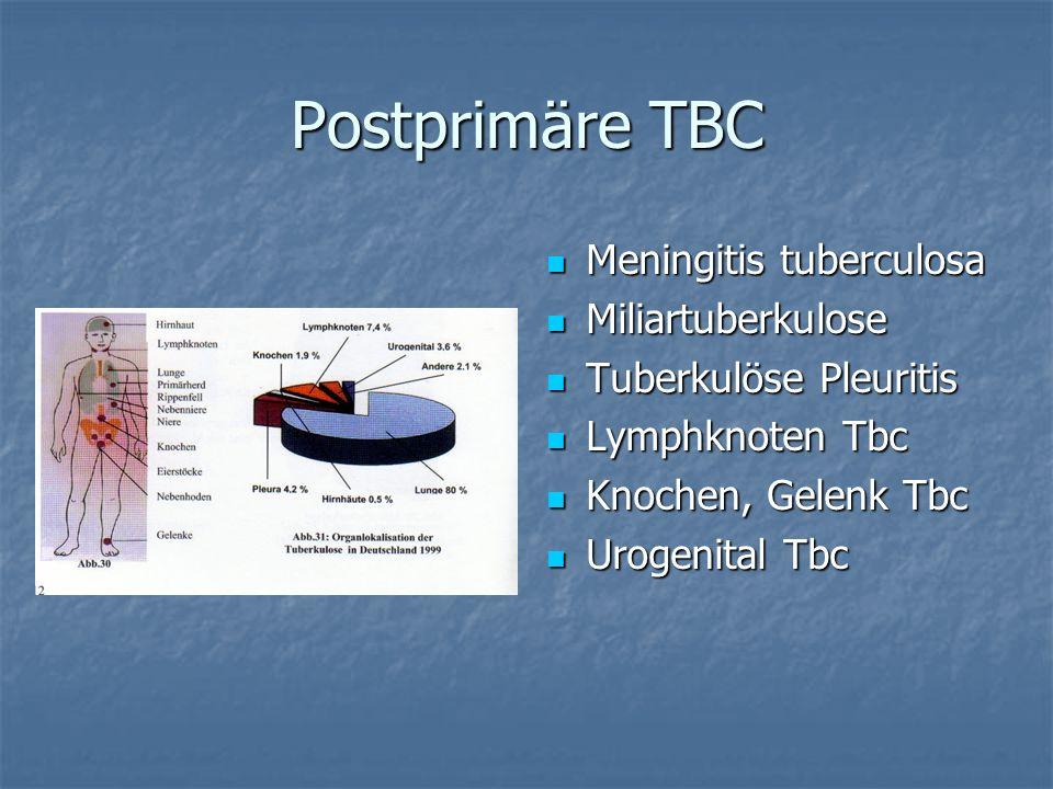 Postprimäre TBC Meningitis tuberculosa Meningitis tuberculosa Miliartuberkulose Miliartuberkulose Tuberkulöse Pleuritis Tuberkulöse Pleuritis Lymphkno