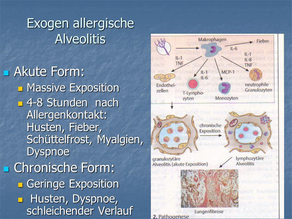 Exogen allergische Alveolitis Akute Form: Akute Form: Massive Exposition Massive Exposition 4-8 Stunden nach Allergenkontakt: Husten, Fieber, Schüttel