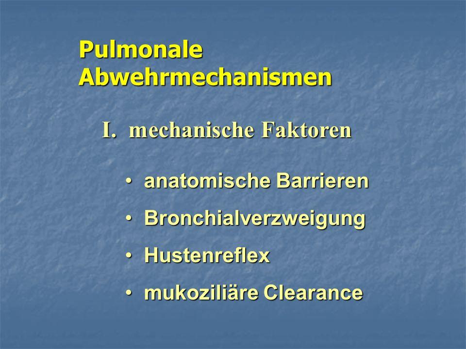 Pulmonale Abwehrmechanismen I. mechanische Faktoren anatomische Barrieren anatomische Barrieren Bronchialverzweigung Bronchialverzweigung Hustenreflex