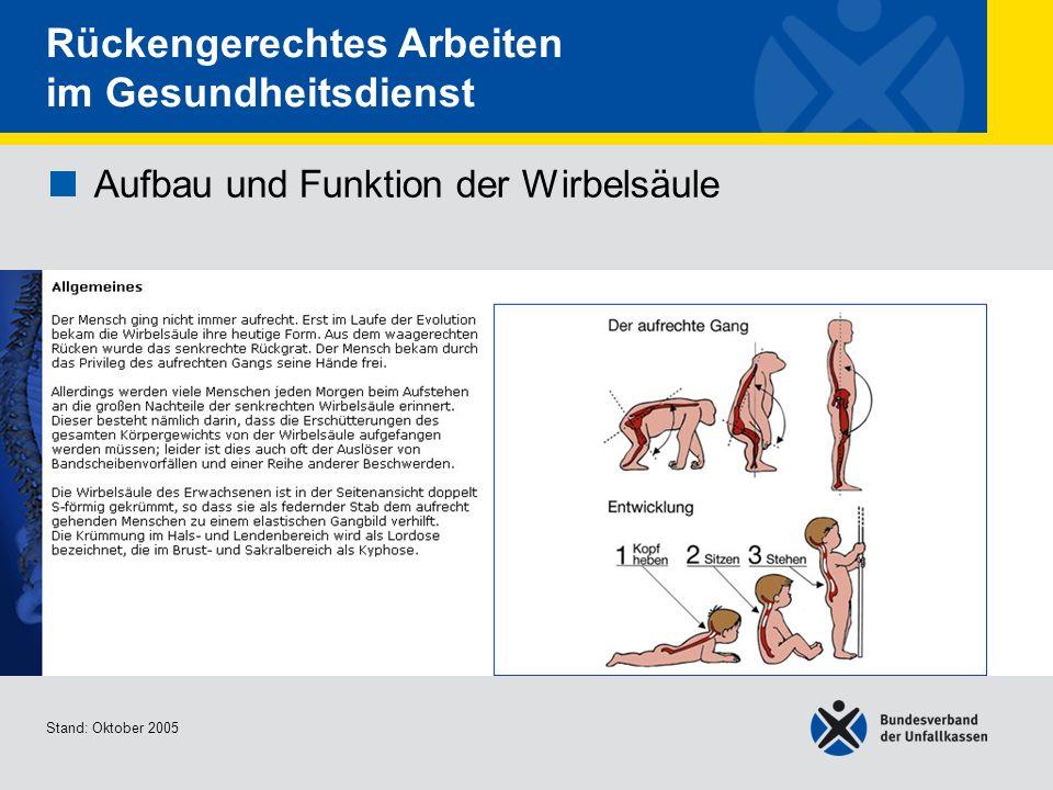 Aufbau und Funktion der Wirbelsäule Allgemeines Stand: Oktober 2005 Rückengerechtes Arbeiten im Gesundheitsdienst Aufbau und Funktion der Wirbelsäule
