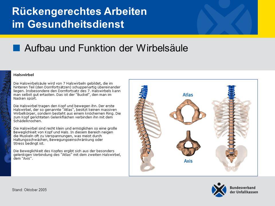 Aufbau und Funktion der Wirbelsäule Brust- und Lendenwirbel Stand: Oktober 2005 Rückengerechtes Arbeiten im Gesundheitsdienst Aufbau und Funktion der Wirbelsäule