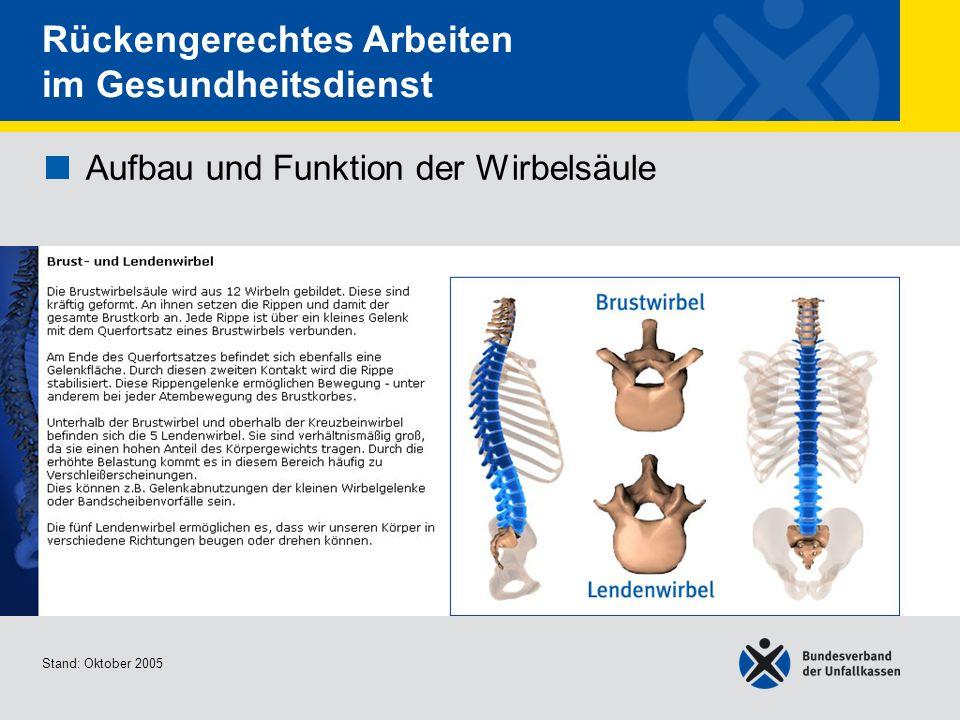Aufbau und Funktion der Wirbelsäule Brust- und Lendenwirbel Stand: Oktober 2005 Rückengerechtes Arbeiten im Gesundheitsdienst Aufbau und Funktion der