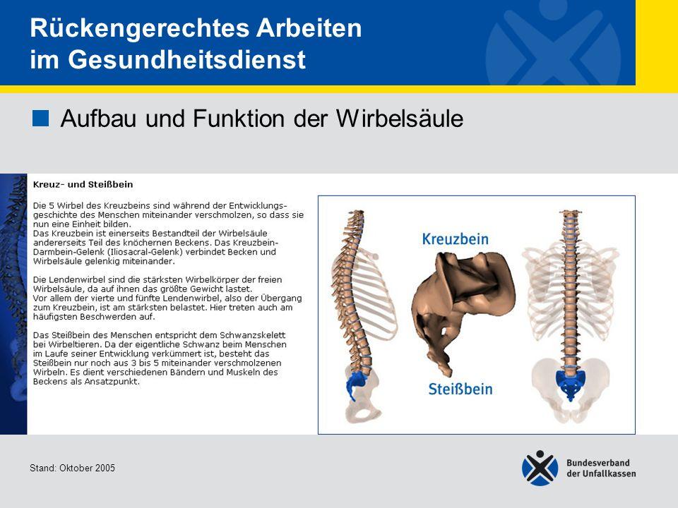 Aufbau und Funktion der Wirbelsäule Kreuz und Steißbein Stand: Oktober 2005 Rückengerechtes Arbeiten im Gesundheitsdienst Aufbau und Funktion der Wirb
