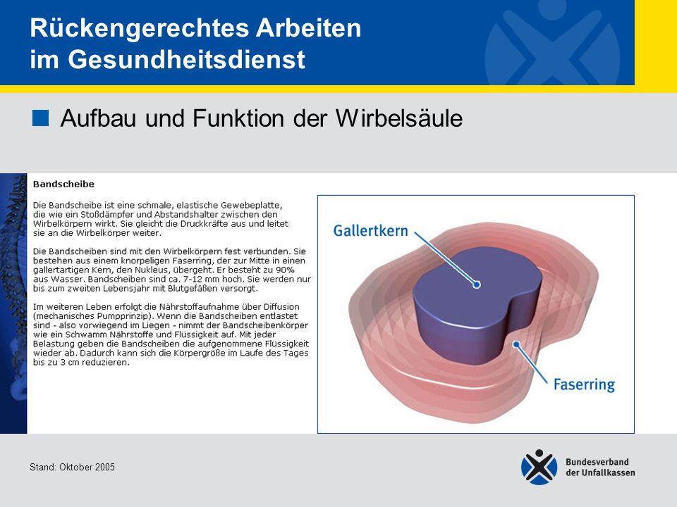 Aufbau und Funktion der Wirbelsäule Bandscheibe Stand: Oktober 2005 Rückengerechtes Arbeiten im Gesundheitsdienst Aufbau und Funktion der Wirbelsäule