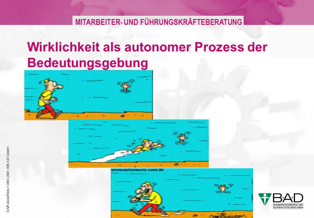 ÖA/Folien//Vers.1.0/03.2007, © B·A·D GmbH MITARBEITER- UND FÜHRUNGSKRÄFTEBERATUNG Wirklichkeit als autonomer Prozess der Bedeutungsgebung