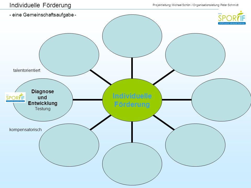 Projektleitung: Michael Schön / Organisationsleitung: Peter Schmidt Individuelle Förderung Diagnose und Entwicklung Testung Individuelle Förderung - e