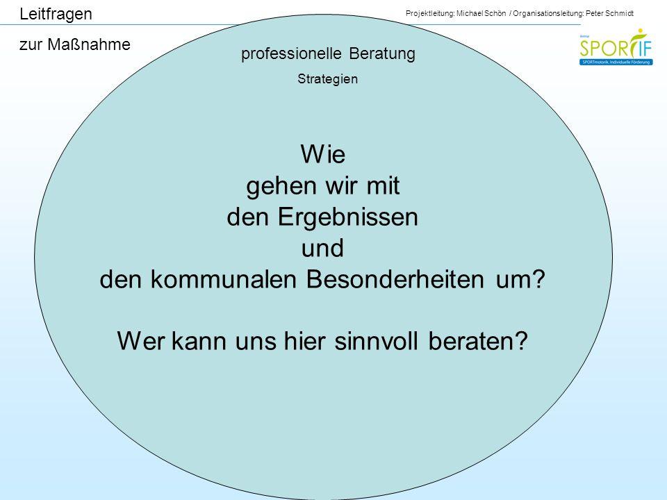 Projektleitung: Michael Schön / Organisationsleitung: Peter Schmidt professionelle Beratung Strategien Leitfragen zur Maßnahme Wie gehen wir mit den E