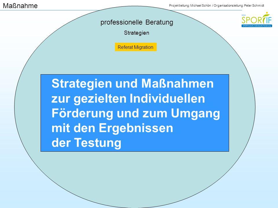 Projektleitung: Michael Schön / Organisationsleitung: Peter Schmidt professionelle Beratung Strategien Strategien und Maßnahmen zur gezielten Individu