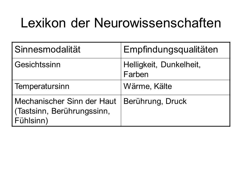 Lexikon der Neurowissenschaften SinnesmodalitätEmpfindungsqualitäten GesichtssinnHelligkeit, Dunkelheit, Farben TemperatursinnWärme, Kälte Mechanische