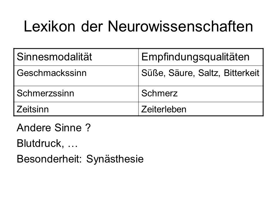Lexikon der Neurowissenschaften SinnesmodalitätEmpfindungsqualitäten GeschmackssinnSüße, Säure, Saltz, Bitterkeit SchmerzssinnSchmerz ZeitsinnZeiterle