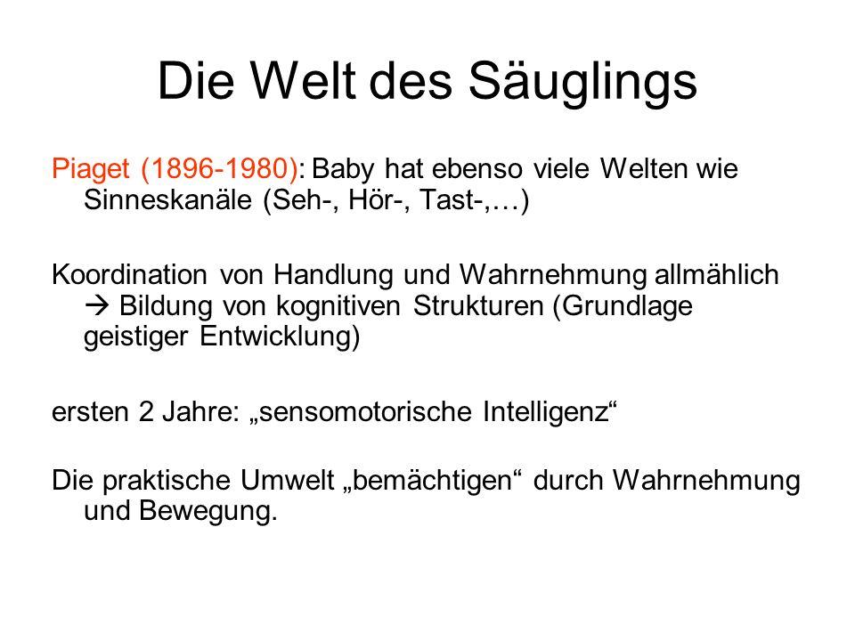 Die Welt des Säuglings Piaget (1896-1980): Baby hat ebenso viele Welten wie Sinneskanäle (Seh-, Hör-, Tast-,…) Koordination von Handlung und Wahrnehmu