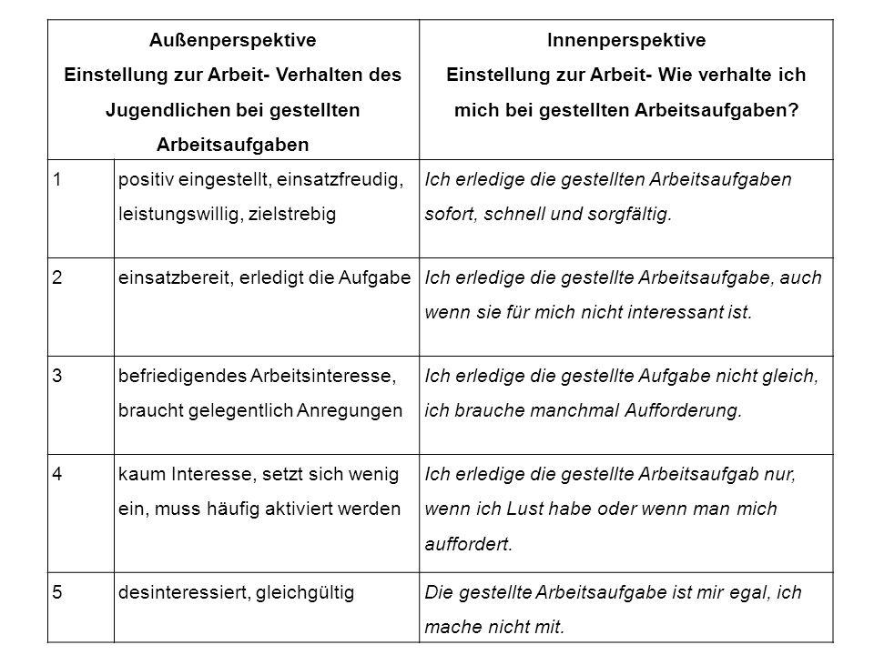 Außenperspektive Einstellung zur Arbeit- Verhalten des Jugendlichen bei gestellten Arbeitsaufgaben Innenperspektive Einstellung zur Arbeit- Wie verhal