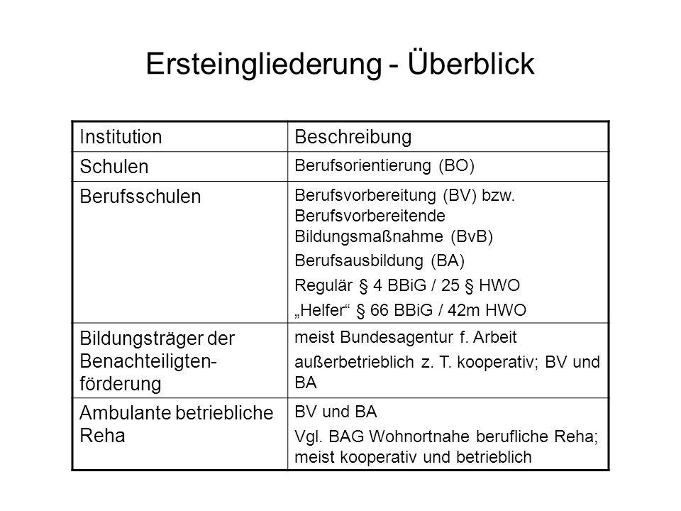Ersteingliederung – Überblick (2) InstitutionBeschreibung Ingrationsfachdienste (IFD) BO, Vermittlung und Begleitung bei Ausbildung und Arbeit Integrationsprojekte / - unternehmen Vgl.