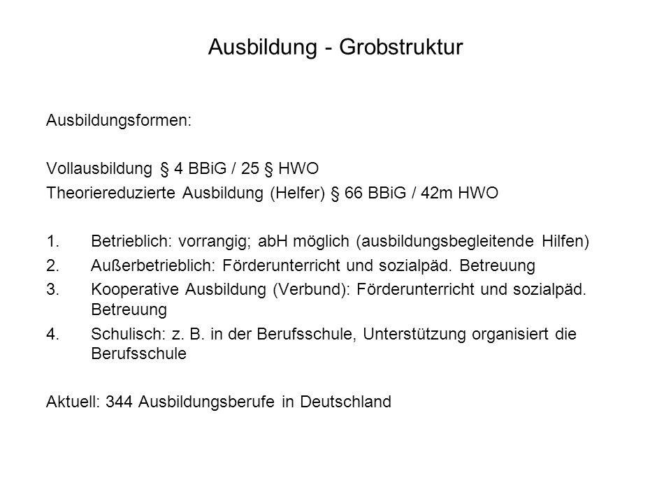 Ausbildung - Grobstruktur Ausbildungsformen: Vollausbildung § 4 BBiG / 25 § HWO Theoriereduzierte Ausbildung (Helfer) § 66 BBiG / 42m HWO 1.Betrieblic