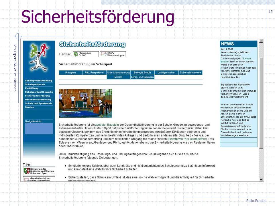 Felix Pradel Schulsport NRW im Internet 15 Sicherheitsförderung