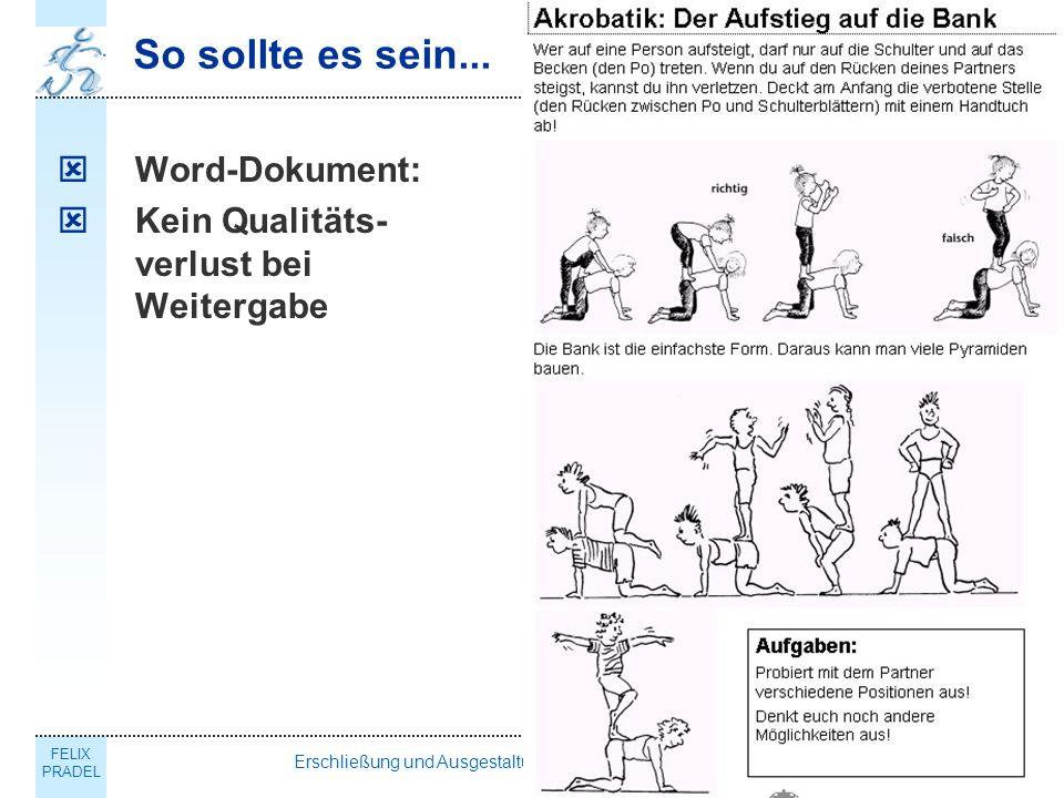 FELIX PRADEL Erschließung und Ausgestaltung des Schulsportportals NRW15 So sollte es sein...