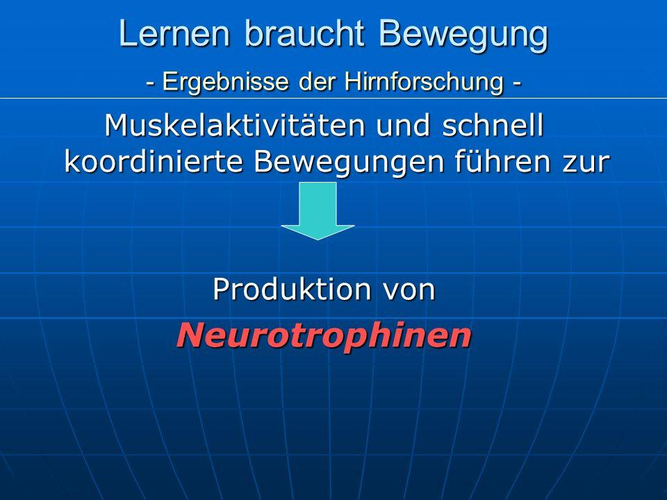 Lernen braucht Bewegung - Ergebnisse der Hirnforschung - Muskelaktivitäten und schnell koordinierte Bewegungen führen zur Produktion von Neurotrophine