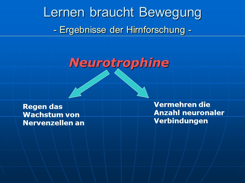 Lernen braucht Bewegung - Ergebnisse der Hirnforschung - Neurotrophine Regen das Wachstum von Nervenzellen an Vermehren die Anzahl neuronaler Verbindu