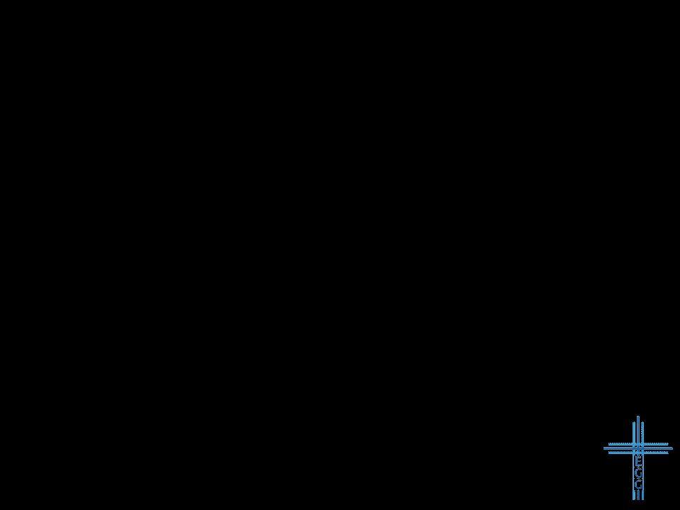 2.Lammesblut: Das Passahlamm Das Passahfest (2.