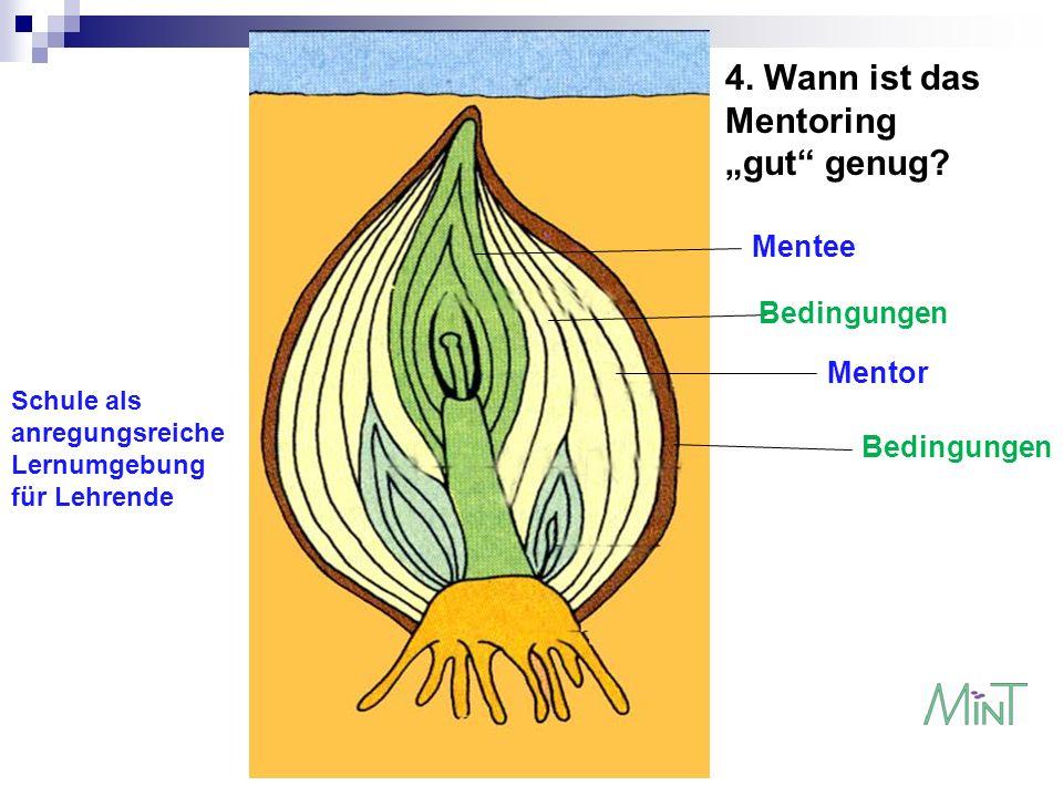 Mentee Bedingungen Mentor Schule als anregungsreiche Lernumgebung für Lehrende 4. Wann ist das Mentoring gut genug?