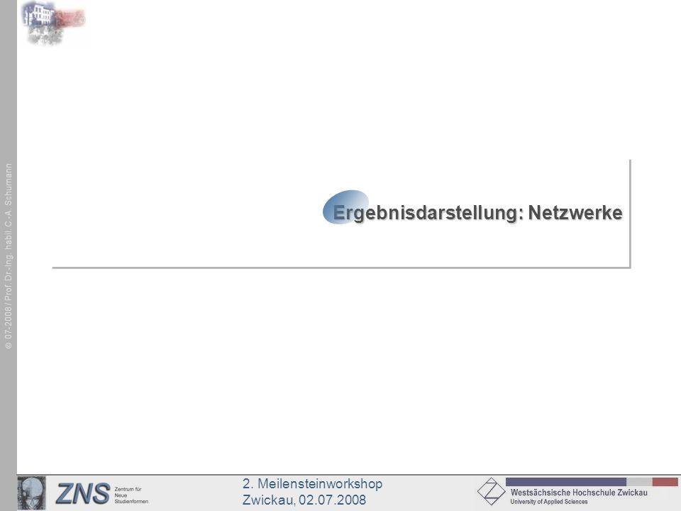 2. Meilensteinworkshop Zwickau, 02.07.2008 07-2008 / Prof. Dr.-Ing. habil. C.-A. Schumann Ergebnisdarstellung: Netzwerke