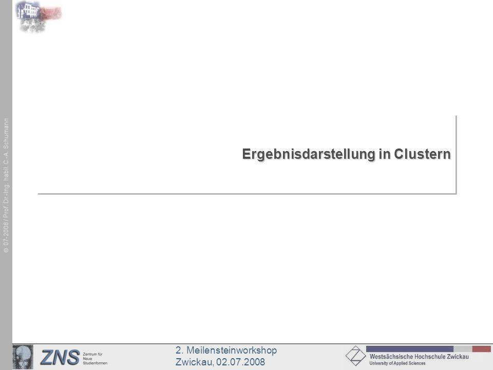 2. Meilensteinworkshop Zwickau, 02.07.2008 07-2008 / Prof. Dr.-Ing. habil. C.-A. Schumann Ergebnisdarstellung in Clustern