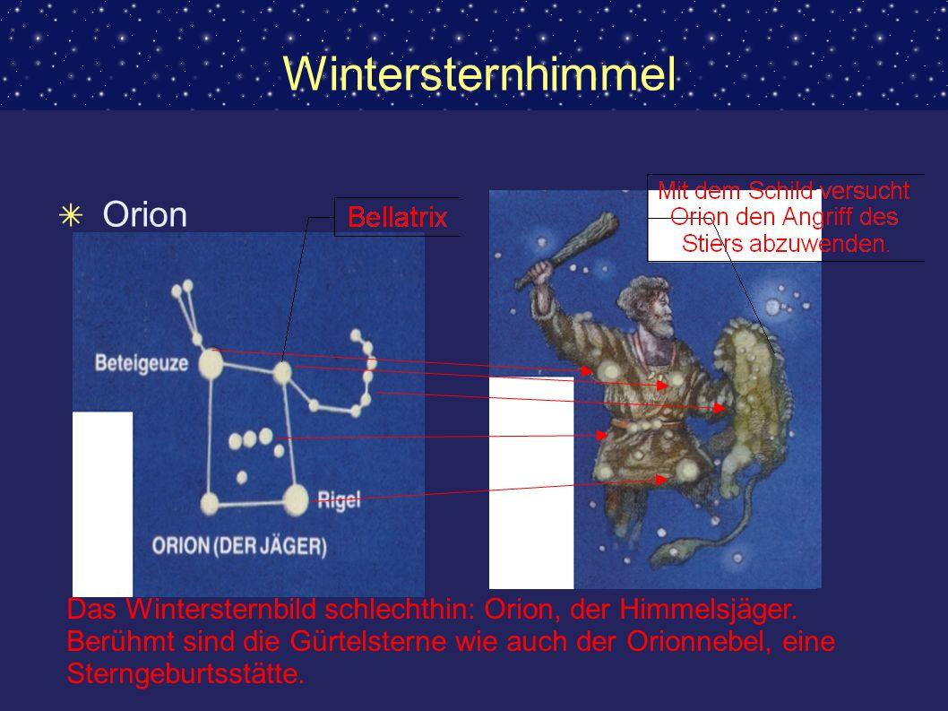 Wintersternhimmel Orion Das Wintersternbild schlechthin: Orion, der Himmelsjäger. Berühmt sind die Gürtelsterne wie auch der Orionnebel, eine Sterngeb