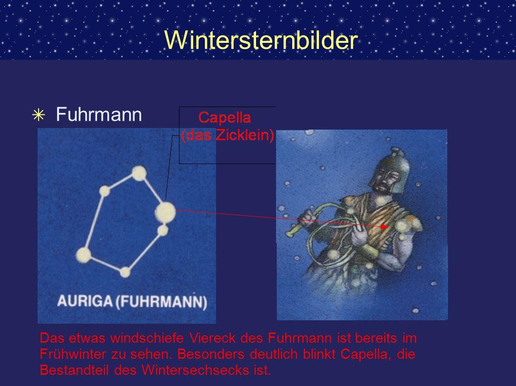 Wintersternbilder Fuhrmann Das etwas windschiefe Viereck des Fuhrmann ist bereits im Frühwinter zu sehen. Besonders deutlich blinkt Capella, die Besta