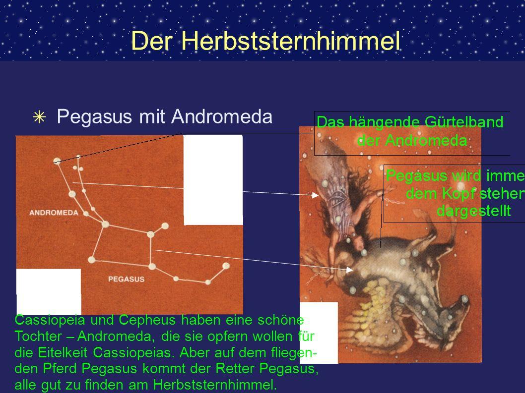 Der Herbststernhimmel Pegasus mit Andromeda Cassiopeia und Cepheus haben eine schöne Tochter – Andromeda, die sie opfern wollen für die Eitelkeit Cass