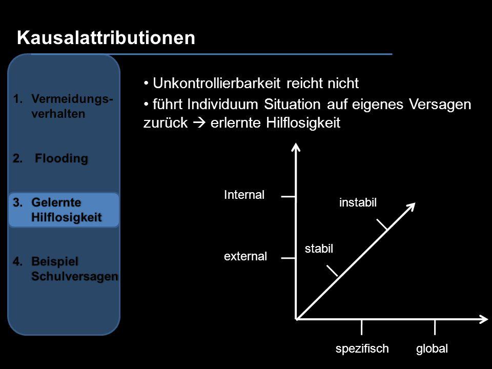Internal instabil stabil spezifischglobal external Kausalattributionen Unkontrollierbarkeit reicht nicht führt Individuum Situation auf eigenes Versag