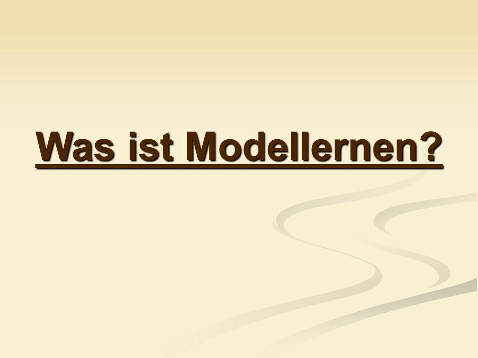 Was ist Modellernen?