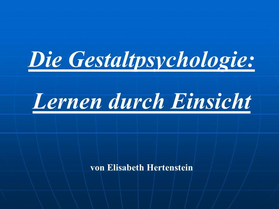Die Gestaltpsychologie: Lernen durch Einsicht von Elisabeth Hertenstein