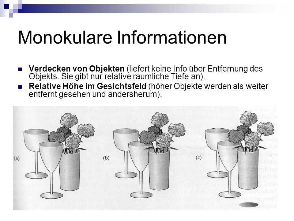 Monokulare Informationen Verdecken von Objekten (liefert keine Info über Entfernung des Objekts.