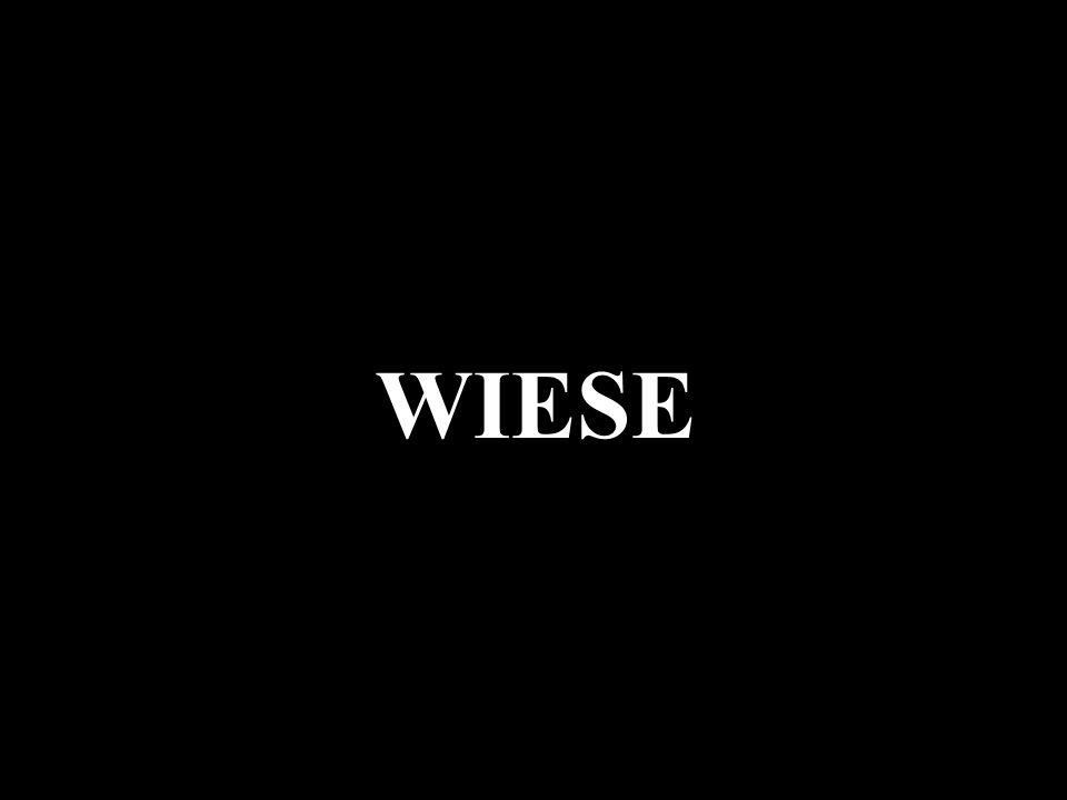 WIESE