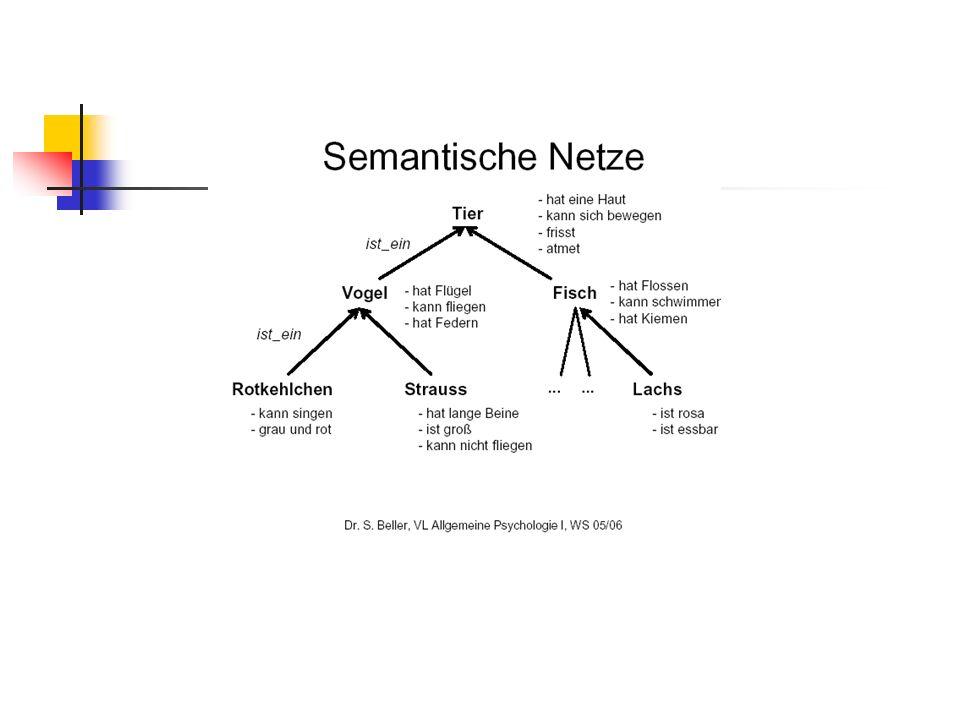 Merkmale semantischer Netzwerke Kategorien hierarchischer Aufbau Knoten = Begriffe Kanten= Verbindungen zwischen den Begriffen Charakteristische Beziehung zwischen Oberbegriff und Unterbegriff Merkmale: werden mit der jeweils höchstmöglichen Ebene des Netzwerks an die Begriffe gebunden Ausnahmen: Emu isa-Verbindungen: Ausdruck der Oberbegriff-Unterbegriff- Relation