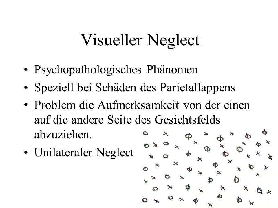Visueller Neglect Psychopathologisches Phänomen Speziell bei Schäden des Parietallappens Problem die Aufmerksamkeit von der einen auf die andere Seite