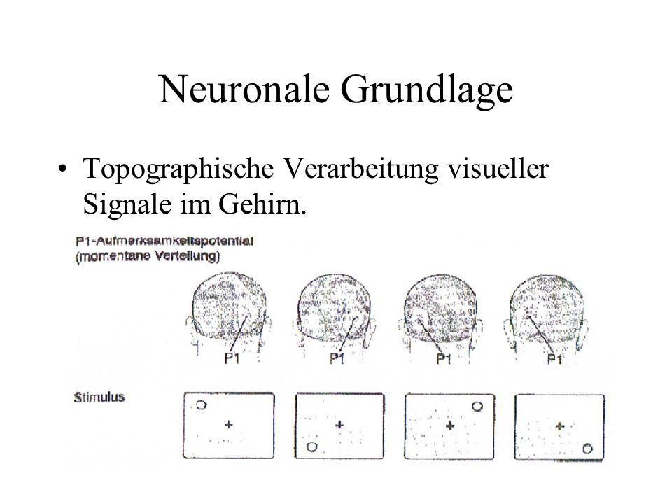 Das visuell-sensorische Gedächtnis.Art visuelles Kurzzeitgedächtnis Speicher für die Dauer von ca.