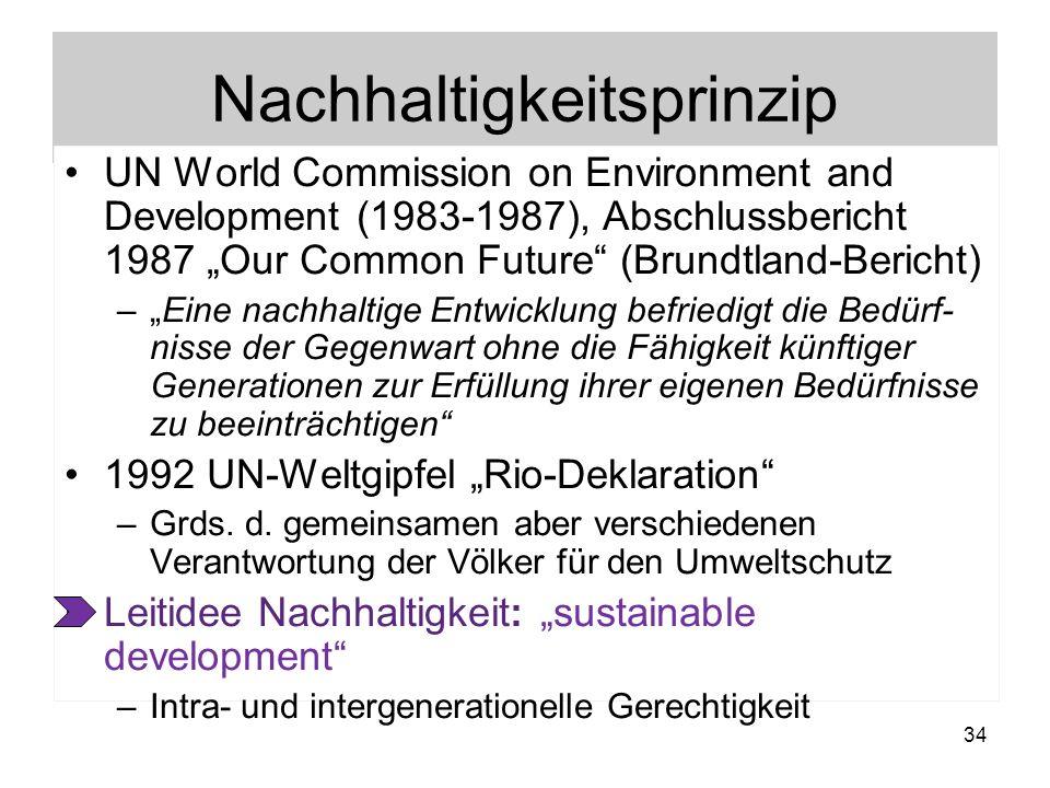 Nachhaltigkeitsprinzip UN World Commission on Environment and Development (1983-1987), Abschlussbericht 1987 Our Common Future (Brundtland-Bericht) –E