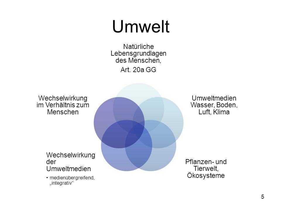 Fall 1: Waldsterben und Pseudokrupp (nach Schmidt/Kahl, Umweltrecht, 8.