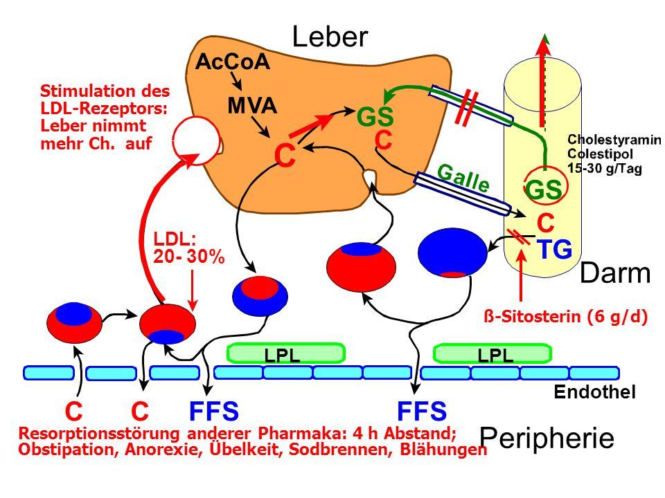 C AcCoA MVA C GS FFS CC LPL Endothel Peripherie Leber C GS LDL: 20- 30% Stimulation des LDL-Rezeptors: Leber nimmt mehr Ch.