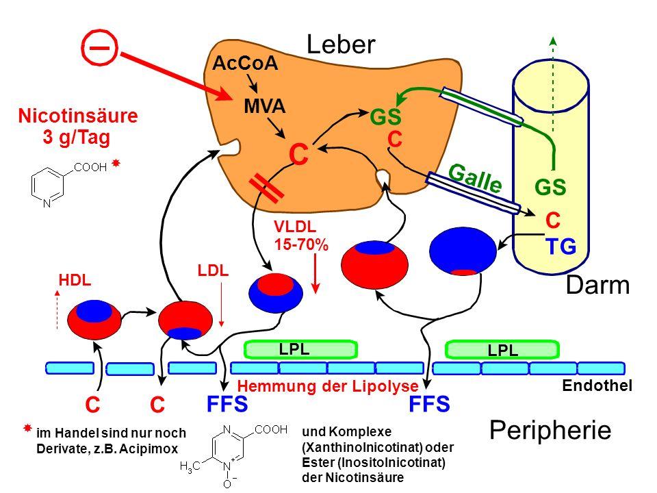 C C TG AcCoA MVA C GS FFS CC LPL Endothel Peripherie Leber Darm Hemmung der Lipolyse Nicotinsäure 3 g/Tag VLDL 15-70% HDL LDL im Handel sind nur noch Derivate, z.B.